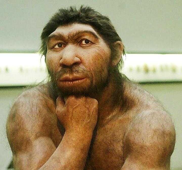 neanderthaler.jpg