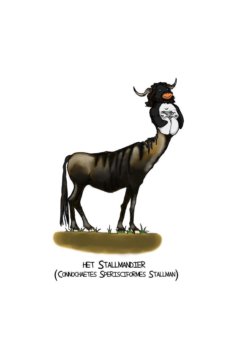 stallmandier.jpg